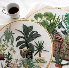Embroidery succulents and cacti