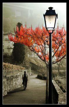 edgar allan poe street light tattoobird and streetlighttattoo - Google Search