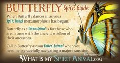 In-depth Butterfly Symbolism & Butterfly Meanings! Butterfly as a Spirit, Totem, & Power Animal. Butterflies in Celtic & Native American Symbols & Dreams!