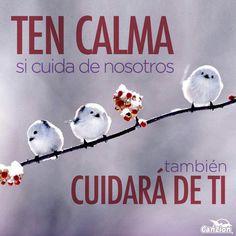 """Ten calma """"Don't worry, it gets better!"""""""