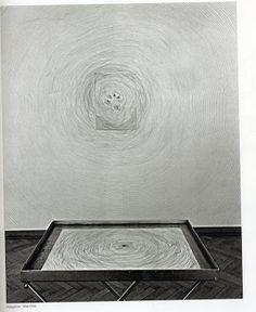 ARTS PLASTIQUES: Giuseppe PENONE 1994.1996