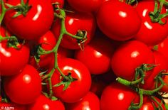 Spray tomato plants 2-3 times a month with 250 to 500mg aspirin & 1 gallon water to prevent diseases.