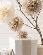 see how to make tissue paper pom poms, easy craft and decorating idea from Tara Dennis