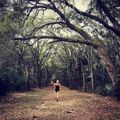 Run the trails at The Westin Hilton Head Island Resort & Spa using our Westin running maps like with 2008 Olympic Qualifier Kathleen Jobes. #RunWestin #RunWithAView Hotels-live.com via https://www.instagram.com/p/BEJMp4Gs7ML/ #Flickr