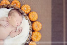 love the seasonal idea here. When ever the babies birthday month is you can do it themed like that, for example if the babies bday is in February you can do hearts Baby Poses, Newborn Poses, Newborn Shoot, Newborn Baby Photography, Fall Newborn Pictures, Newborns, Fall Baby Pictures, Baby Pumpkin Pictures, October Pictures