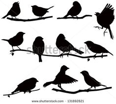 Vector images silhouettes of birds on a branch/ Silhouettes bird on a branch - stock vector