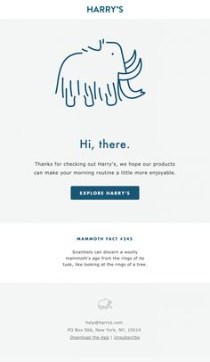 46 Best Welcome Email Design Images Email Newsletter Design Email