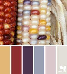 color corn #colorpalette #warmtones #home