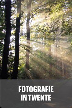 De beste fotografie locaties in Twente. Fotografie in Nederland. Natuurfotograaf. Plants, Outdoor, Instagram, Outdoors, Flora, The Great Outdoors, Plant