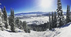 Blue bird day 🌞 #instadaily #nature #jacksonhole #snow #snowboarding #nature #nice #instagram #outdoors