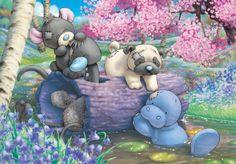 Blue Nose Friends Blossom Pond