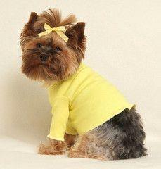Sunny Yellow Turtleneck Shirt