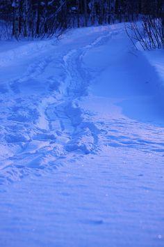 a glimpse of sun in the long, dark, Finnish winter
