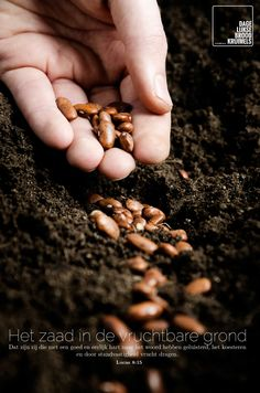 Het zaad in de vruchtbare grond, dat zijn zij die met een goed en eerlijk hart naar het woord hebben geluisterd, het koesteren en door standvastigheid vrucht dragen. Lucas 8:15 #Eerlijkheid, #Hart http://www.dagelijksebroodkruimels.nl/lucas-8-15/