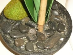 rocks Rock Decor, Rocks, Ethnic Recipes, Food, Essen, Meals, Stone, Batu, Yemek