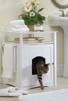 Cat litter box - put it in the mudroom instead - or a less commonly used bathroom