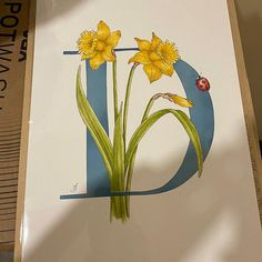 O is for Olive illuminated print with hand applied gold leaf. | Etsy Floral Letters, Gold Letters, Calligraphy Alphabet, Gouache Painting, Beautiful Paintings, Order Prints, Giclee Print, Camellia, Fine Art Prints