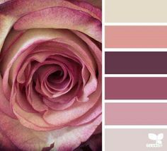 """Rose hues"" colour palette, on design seeds Colour Pallette, Color Palate, Colour Schemes, Color Combos, Color Patterns, Pantone, Design Seeds, World Of Color, Color Swatches"