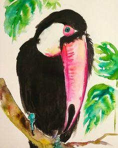 Keel-billed Toucan original watercolor painting by orangerinka