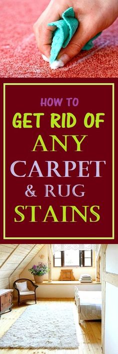 How To Get Rid Of Any Carpet And Rug Stains #cleaning #home #clean #cleaningtips