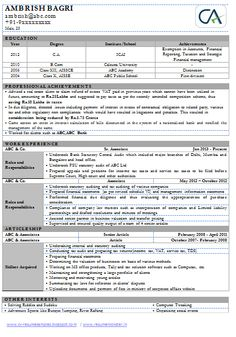 chartered accountant sample resume professional curriculum vitae professional sample template one - Sample Resume Of Chartered Accountantindia