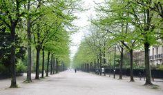 Paris; photo credit; jcmdesign.