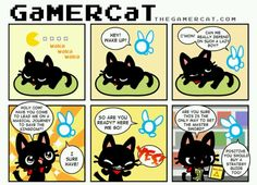 The Gamer Cat