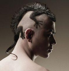 capelli-geco