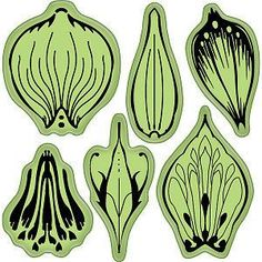 Printable Flower Petal Patterns - Bing Images