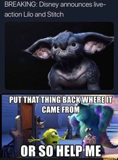Honestly I'm sick of Disney making live action movies. Not that this is actual… Honestly I'm sick of Disney making live action movies. Not that this is actually what Stitch would look like, but I mean come on. Some movies… Continue Reading → Funny Shit, Really Funny Memes, Haha Funny, Funny Cute, Hilarious, Funny Stuff, Random Stuff, Disney Memes, Funny Disney Jokes