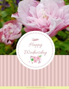 Share warm thoughts with someone dear. Send free eCards for birthdays, Valentine's Day, Christmas, Easter. Fathers Day Ecards, Valentines Day Ecards, Easter Ecards, Christmas Ecards, Good Morning Greetings, Happy Wednesday, Inspirational Thoughts, Birthdays, Floral