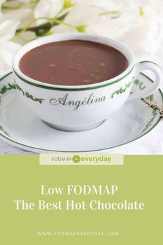 The Best Hot Chocolate is made with high quality chocolate & is low FODMAP when made with lactose-free milk. Fodmap Diet, Low Fodmap, Hot Chocolate Recipes, Vegetarian Chocolate, Lactose Free Milk, Ibs Diet, Fodmap Recipes, Breakfast Lunch Dinner, Food Allergies