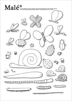 Insect etc. free coloring sheet