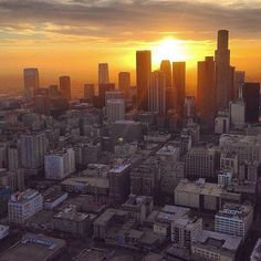 Hello L.A. @copterpilot #drones #dronesdaily #dronesaregood #dronestagram #droneselfie #droneshots # #dji #djing #djiphantom #djiglobal #gopro #goprooftheday #goprohero #gopro4 #goproselfie #summer #dronestagram #goprodaily #dronesdaily #summer #instagood #happy #sUAS #igers #Amazing #Life #Aerial #Beautiful #Love #Urban #UAV  Tag #drofika with your drone pics and video to be featured  by drofika