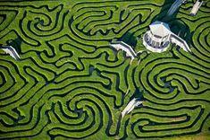 Hedge maze, Longleat
