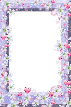 picture frame with white flowers and red hearts borderpng