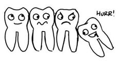 Wisdom teeth do cause pain and other dental problems, if not positioned correctly in your mouth. Edmonton Emergency Dentist provides suggestions for either to remove a wisdom tooth or not. Wisdom teeth are the third and the last molars on the corners of the upper and lower jaw. If they are impacted or cause crowding in your teeth, you should remove it soon. In case if you don't remove it,  conditions like pain, infection, tooth decays and cysts may occur.