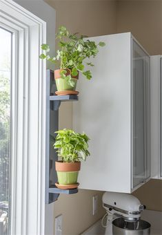 Growing your own herbs is lots of fun. They're compact, easy to grow, fragrant, and colorful. With this compact shelf made from just one board, you can place an herb garden just about anywhere—like in a kitchen window where you can enjoy the plants and Herbs Indoors, Kitchen Window, Kitchen Window Shelves, Window Herb Garden, Kitchen Plants, Kitchen Herbs, Plant Decor, Plant Shelves, Window Shelf For Plants