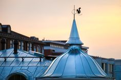 Architectural detail of dome at the rooftop of a building in Finland. A silhouette of squirrel decoration at the top of the dome. Home Pictures, Architecture Details, Cn Tower, Fine Art Photography, Rooftop, Close Up, Fair Grounds, Building, Travel