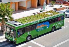 Πράσινες στέγες και στα λεωφορεία!