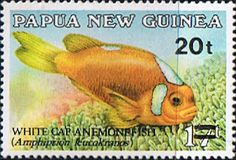 Papua New Guinea 1989 Surcharged Fish Fine Mint SG 602 Scott 720 Other European and British Commonwealth Stamps HERE!