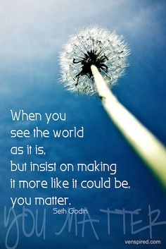 """When you see the world as it is, but insist on making it more like it could be, you mater."" Seth Godin"