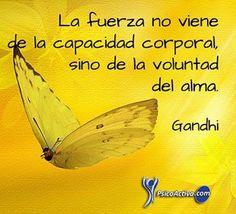 Voluntad... #reflexionesprofundas