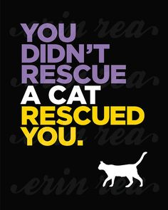 Your Cat Rescued You Custom Cat Art Print by ModernPetPortraits