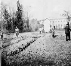 """The vegetable garden that was set up during the Romanovs house arrest at Tsarskoe Selo.Placement was at the Alexander Park near the Alexander Palace.  """"AL"""""""