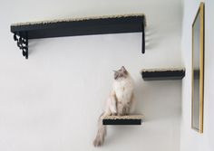 Cats love IKEA furniture too! Turn some hanging wall shelves into a floating cat playground.