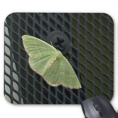 Moth Mousepad. Mouse Pad
