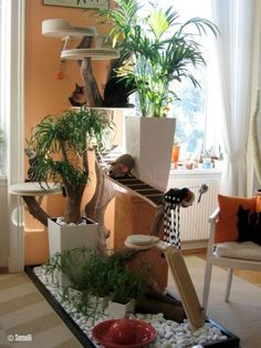I like the mix of plants and cat tree. It solves the unappealing look of a cat tree plopped in an otherwise nice looking room. Cat Apartment, Diy Cat Tree, Cat Run, Cat Hacks, Cat Towers, Cat Playground, Cat Enclosure, Cat Cafe, Cat Condo
