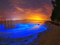 Des vagues bioluminescentes créent un magnifique océan d'étoiles sur les plages des Maldives