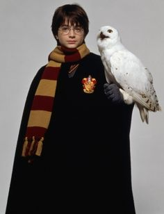 Harry Potter and Hedwig Harry Potter Tumblr, Harry James Potter, Lego Harry Potter, Hedwig Harry Potter, Cosplay Harry Potter, Mundo Harry Potter, Theme Harry Potter, Harry Potter Pictures, Harry Potter Aesthetic